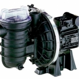 Sta-Rite pool pump 230V
